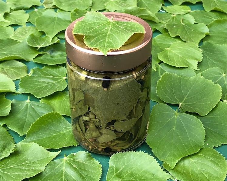 Lindenblätter süß-sauer