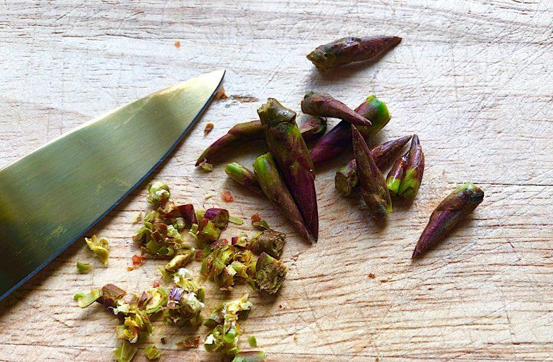 Knospen kulinarisch und naturheilkundlich nützen